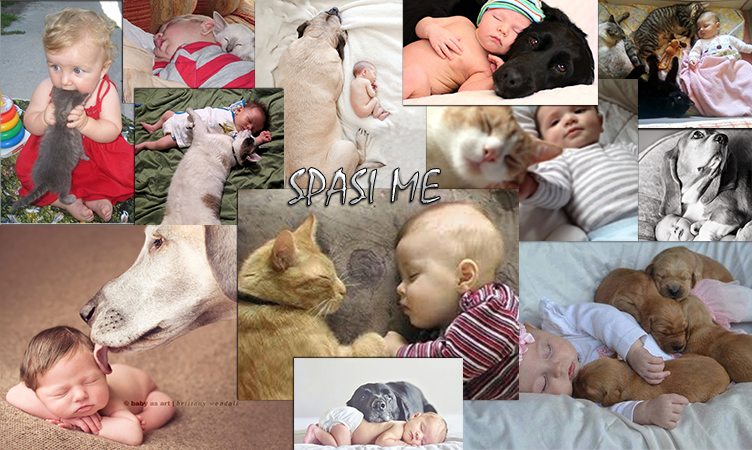 Отглеждане на дете с котка или куче